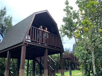 大安露營區明年營運 親子疊大積木暖身