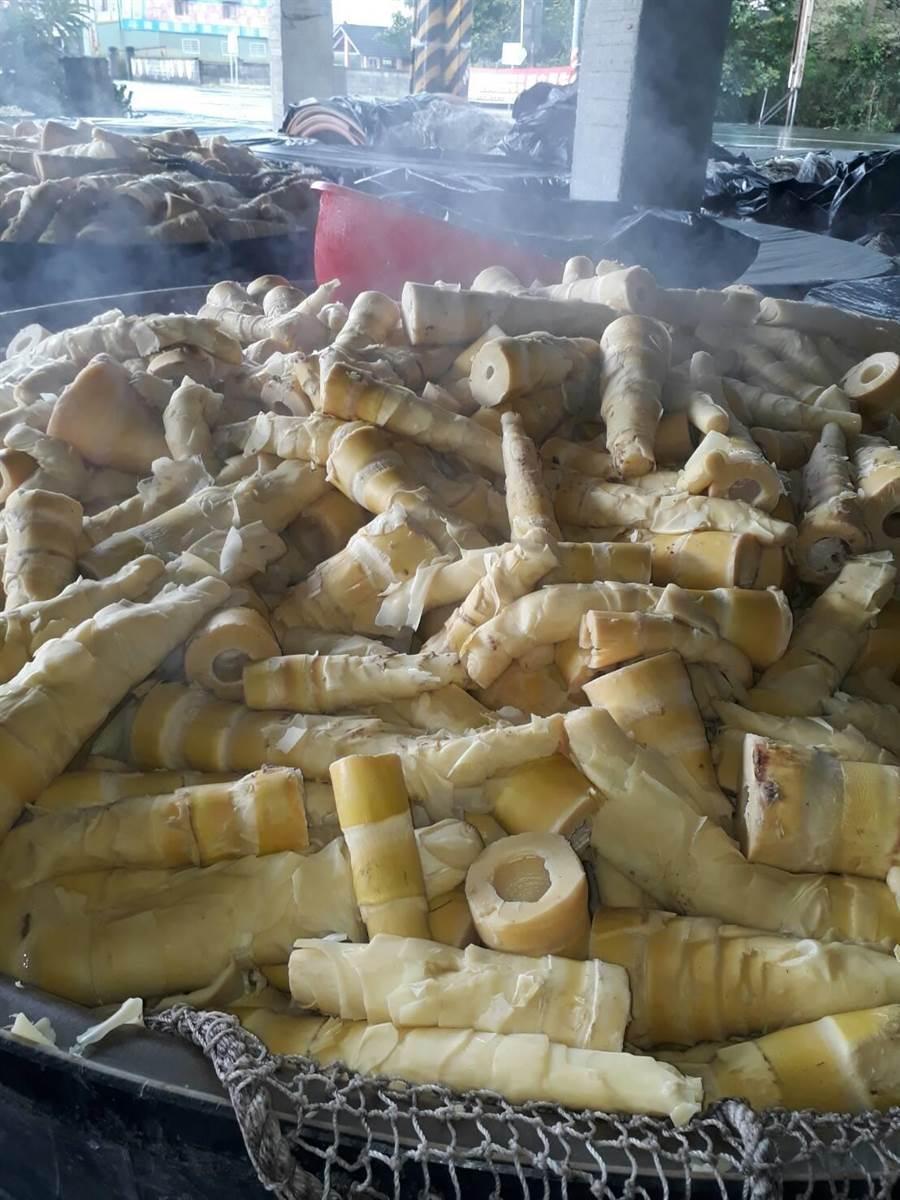 雲林縣古坑鄉麻竹筍以加工為主,農委會鼓勵朝鮮食發展。(許素惠攝)
