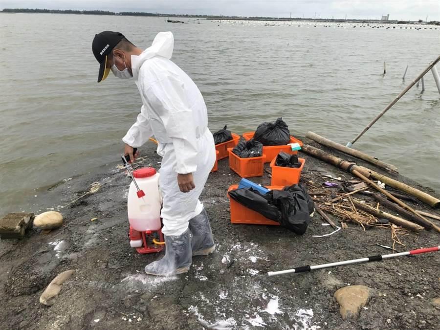 嘉義縣家畜疾病防治所人員在發現豬屍現場進行消毒工作。(呂妍庭翻攝)