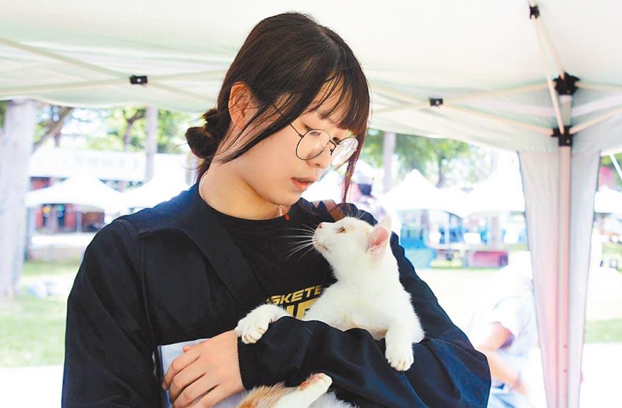 在泰源技訓所受「大哥」照顧的流浪貓,17日開放認養,民眾抱著「出獄」的貓咪,愛不釋手。(莊哲權攝)