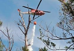 1月3起 綠島火燒山死灰復燃
