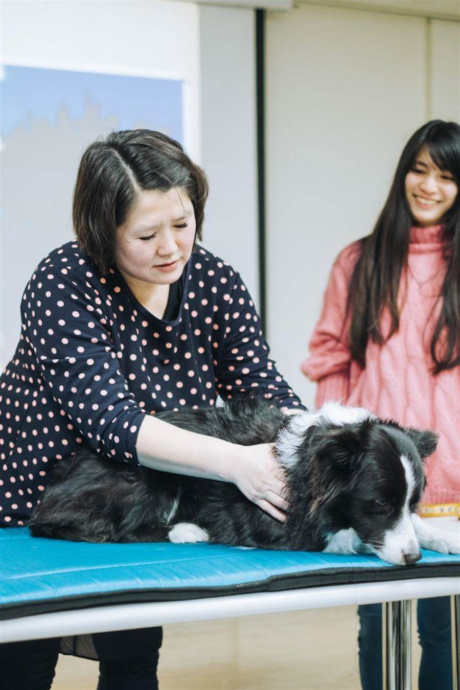 動保處開設課程培訓人員進行犬隻按摩。(譚宇哲翻攝)