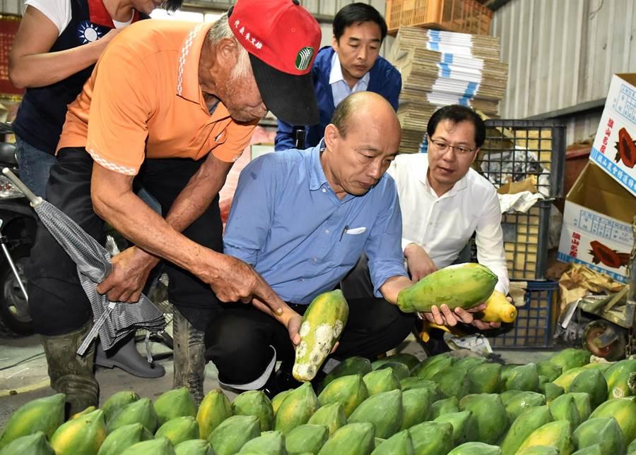 高雄市長韓國瑜(前中)19日上午到旗山區視察木瓜水傷。(林瑞益攝)