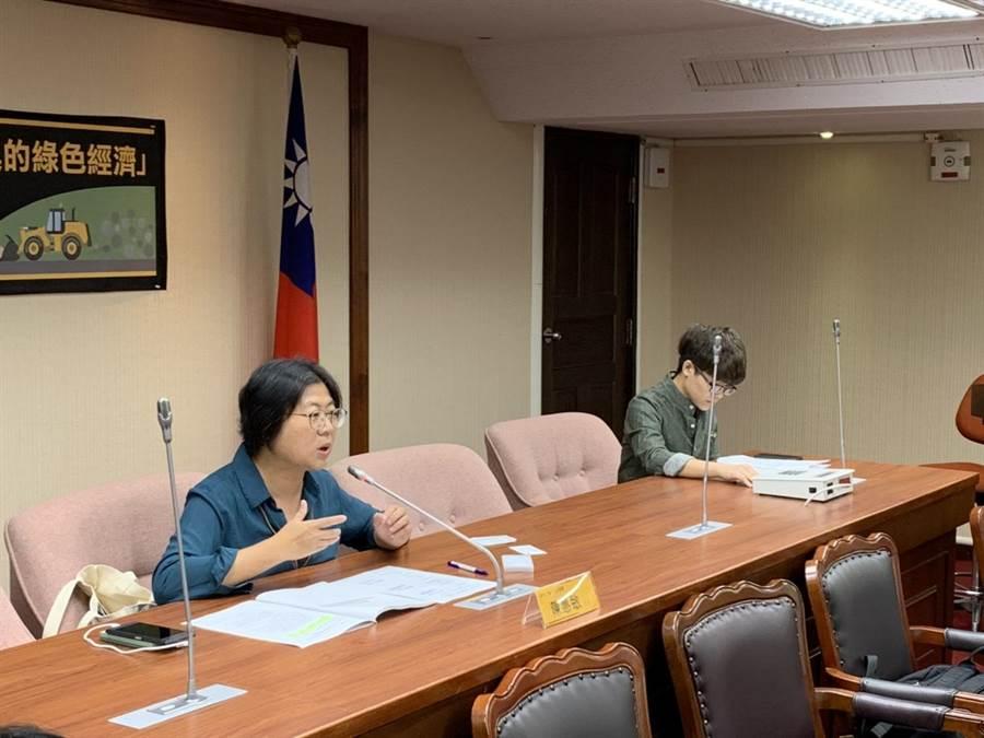 時力黨團主任陳惠敏表示,不可能一邊當主席,一邊在鳳山選舉,所以她不會參選主席。(郭建伸攝)