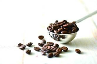 攻「黑金商機」 金鑛咖啡瞄準咖啡供貨產業攻堅