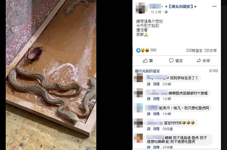黏鼠板驚變動物園 網:生態豐富(圖/ 翻攝自臉書@爆系知識家)