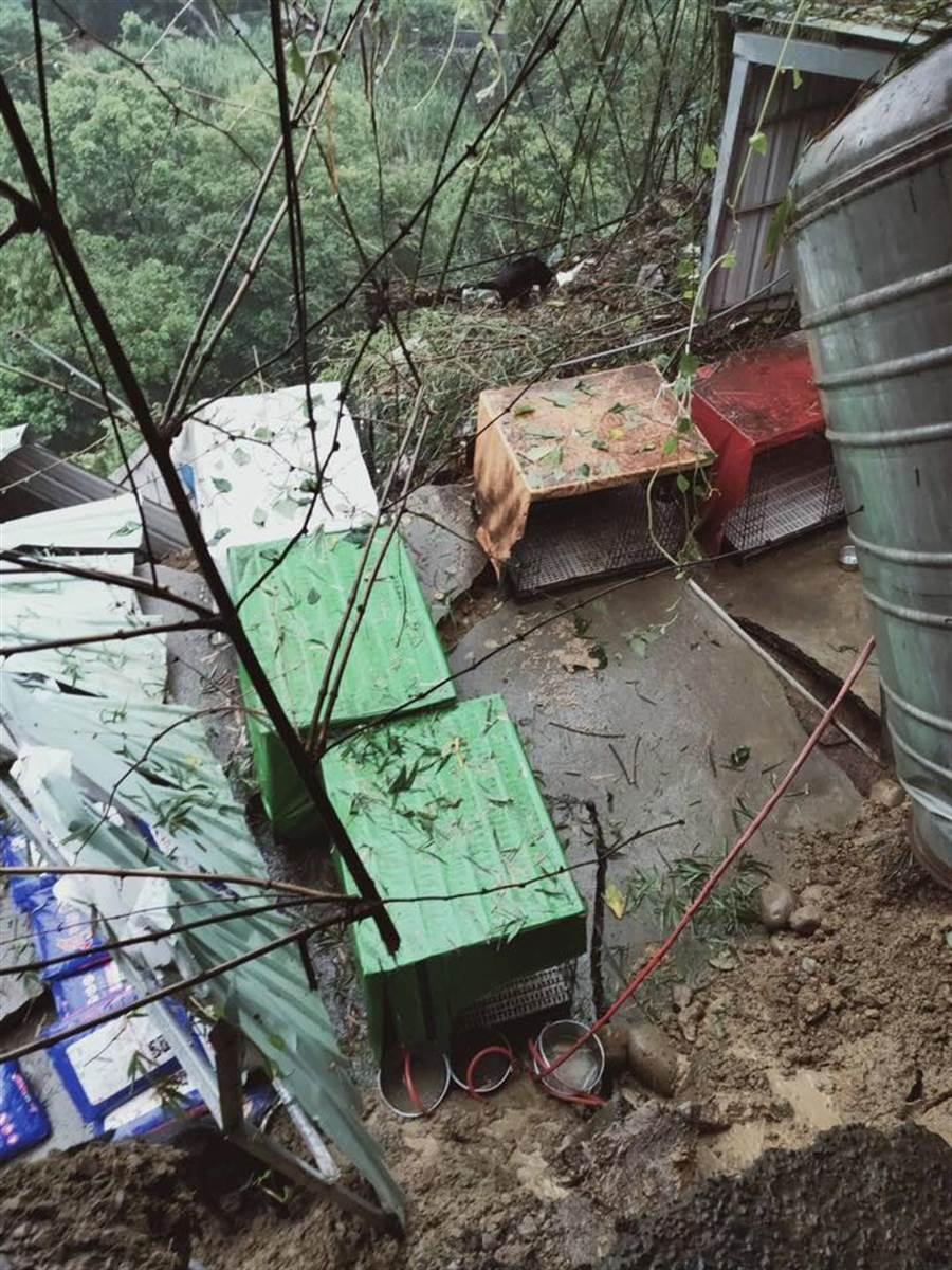 受豪雨影響,台中大坑狗園崩塌,糧食已經不足(圖/莊媽媽的狗園-台中大坑)