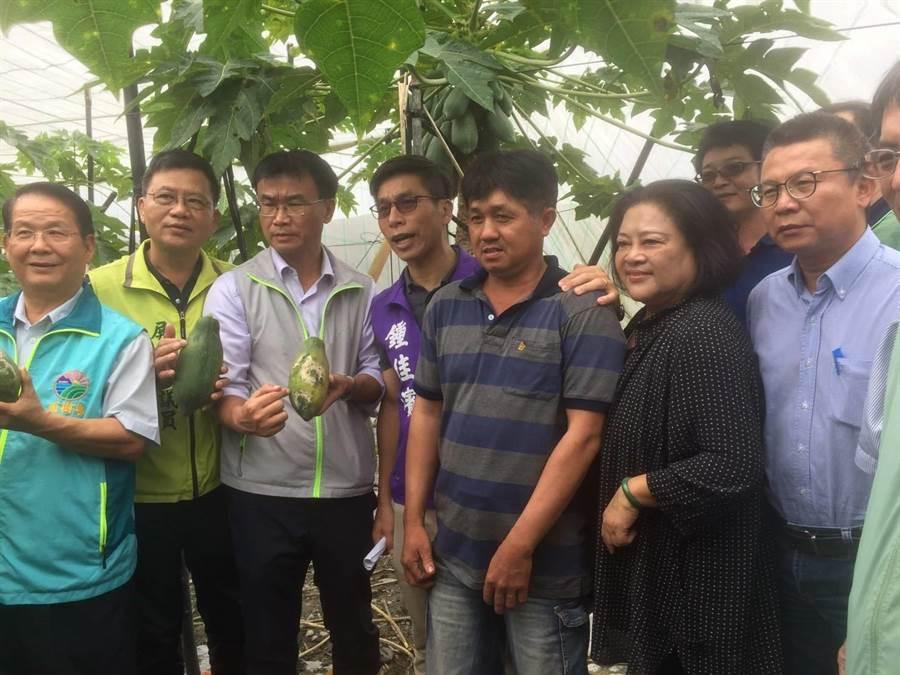 农委会主委陈吉仲(左3)今(20)日前往屏东县视察木瓜灾损。(农委会提供)