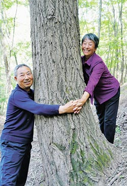 種樹不種糧 陸婦荒坡造林脫貧