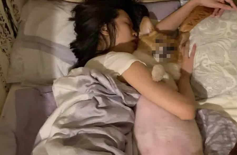 清秀女遭男友指控「強暴」了她養的短腿柯基。(照片來源:Dcard)