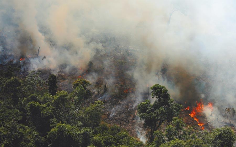 巴西亞馬遜森林近來大火頻傳,統計今年至今該國的亞馬遜雨林野火已高達72000多起,是2013年有紀錄以來最多的一年,地球之肺面臨空前浩劫。但總統波索納洛駁斥他為了開發經濟而縱容農民放火整地。(路透)