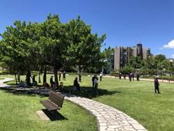 建新公園步道將打掉 大草皮倡槌球運動