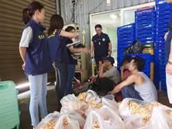 白鹿颱風來襲 移民署查處逾期移工322人