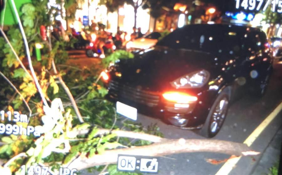 公益路大光街口,22日傍晚中央分隔島路樹樹枝掉落,險擊中路過車輛。(讀者提供)