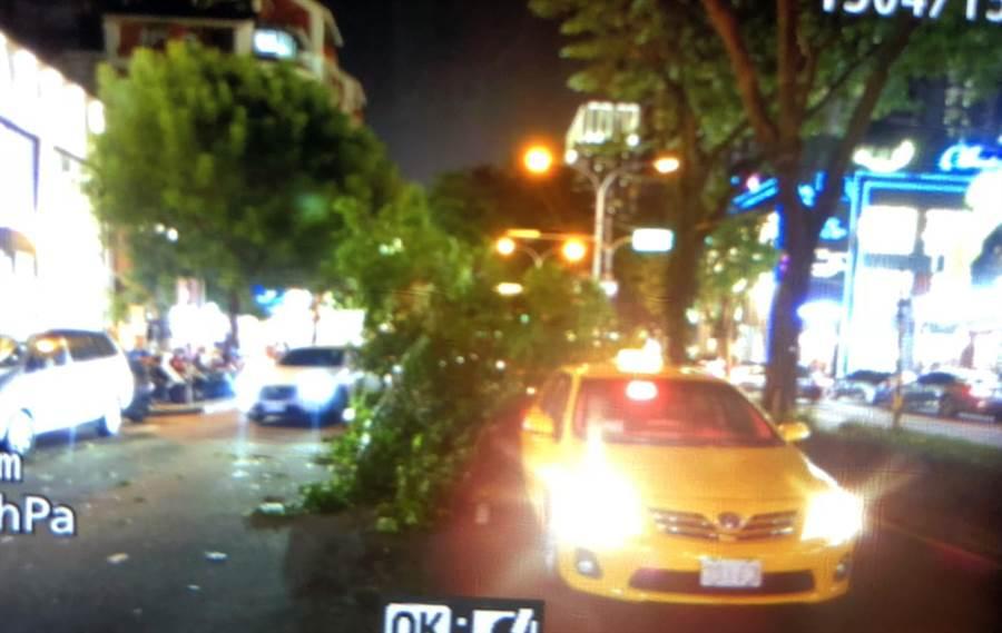 公益路大光街口,22日傍晚中央分隔島路樹樹枝掉落,剛好掉落在路過的二車之間。(讀者提供)