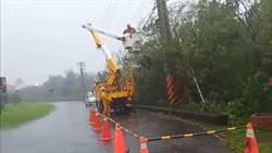 白鹿造成屏東5626戶停電 台電緊急搶修