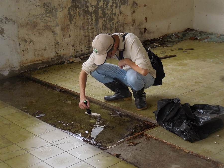 台南市登革熱防治中心再次籲請民眾把握雨後一周防疫時效,落實「巡、倒、清、刷」防範病媒蚊孳生。(曹婷婷翻攝)