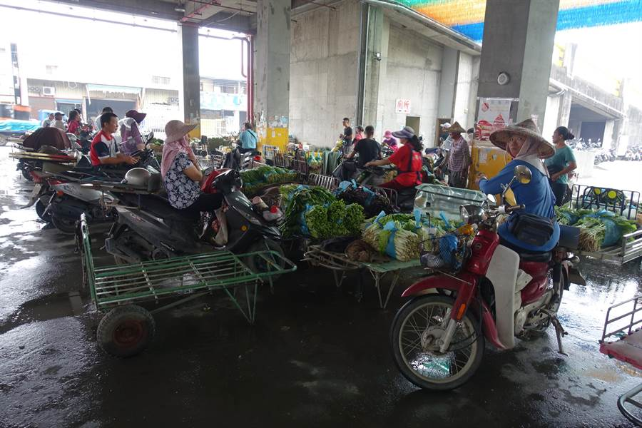 西螺菜農搶收後到西螺果菜市場待價而沽。(周麗蘭攝)