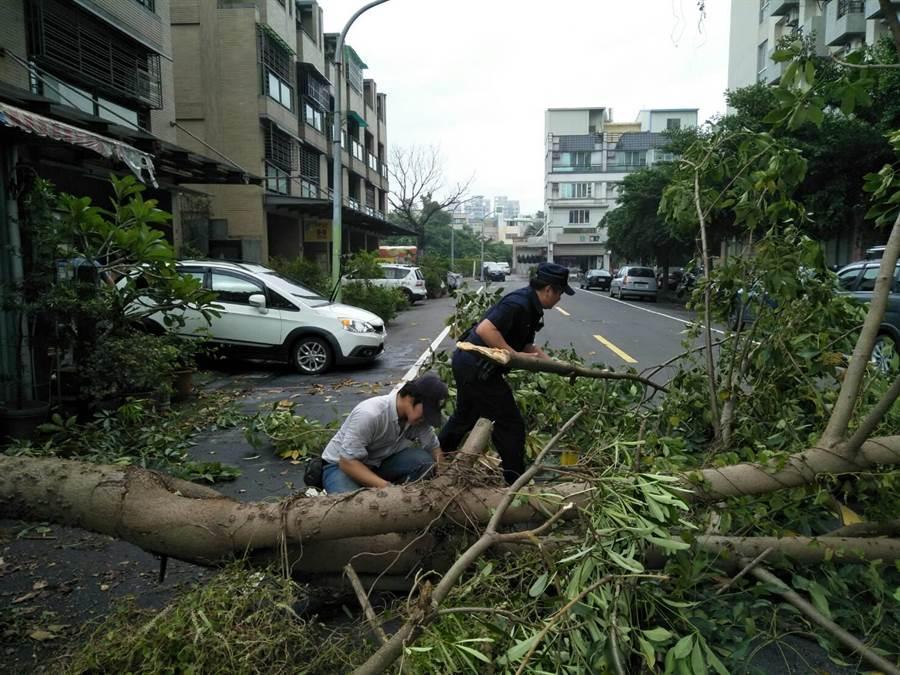 颱風白鹿帶來大雨,24日下午致使高雄市楠梓區卓越路51巷1棵私人所種植的大樹倒塌。警方獲報到場拉起封鎖線,清除路樹。(林瑞益翻攝)