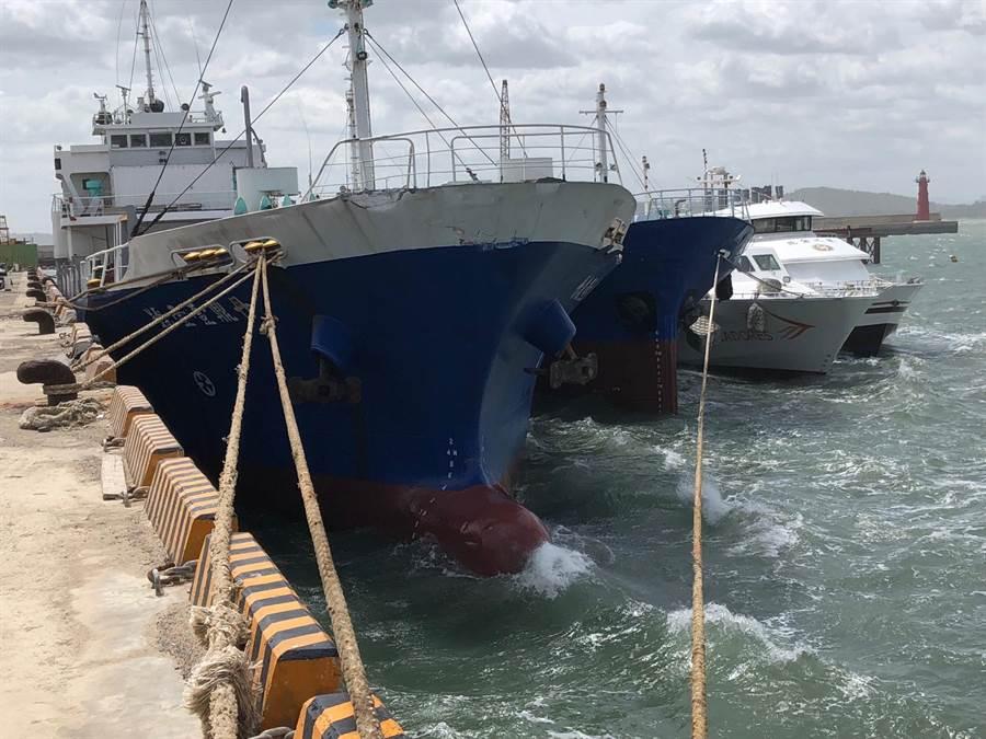 白鹿來襲,金門近百艘大、小船隻進港避風。(李金生攝)