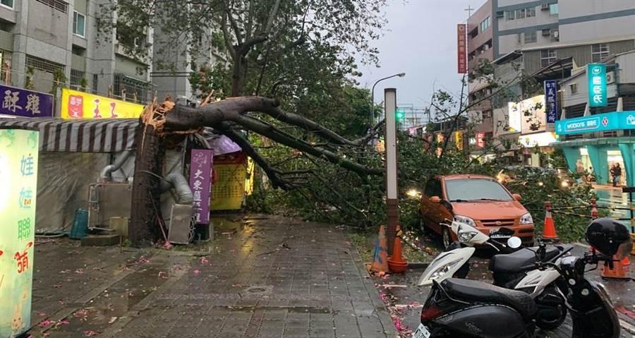南區大林新城大樓管委會所有的路樹倒塌,壓毀路旁車輛。(程炳璋翻攝)