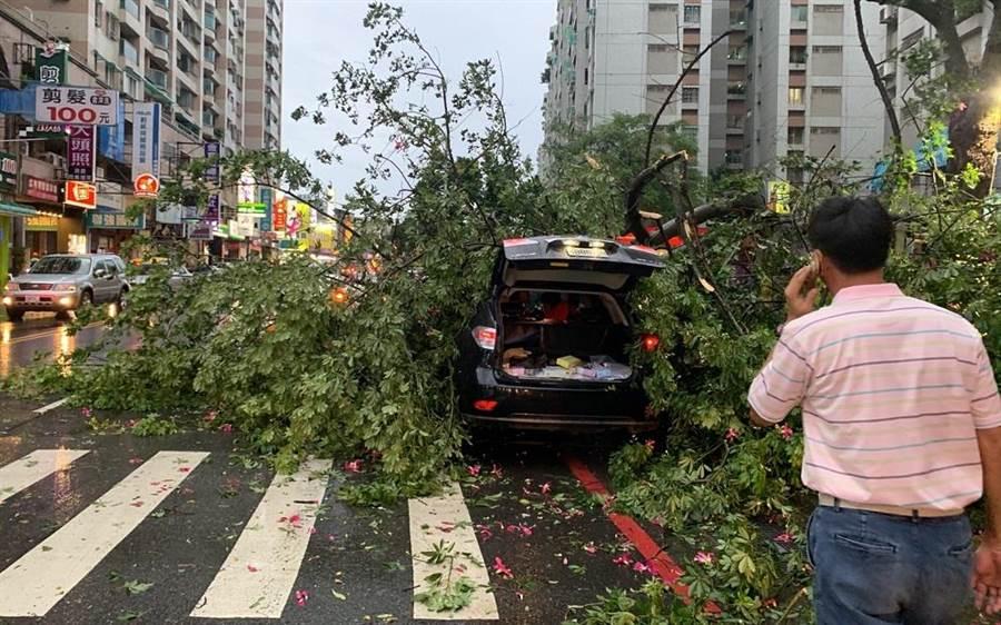 台南市南區大同路二段路樹倒塌,壓中停靠路旁的黑色休旅車。(程炳璋翻攝)