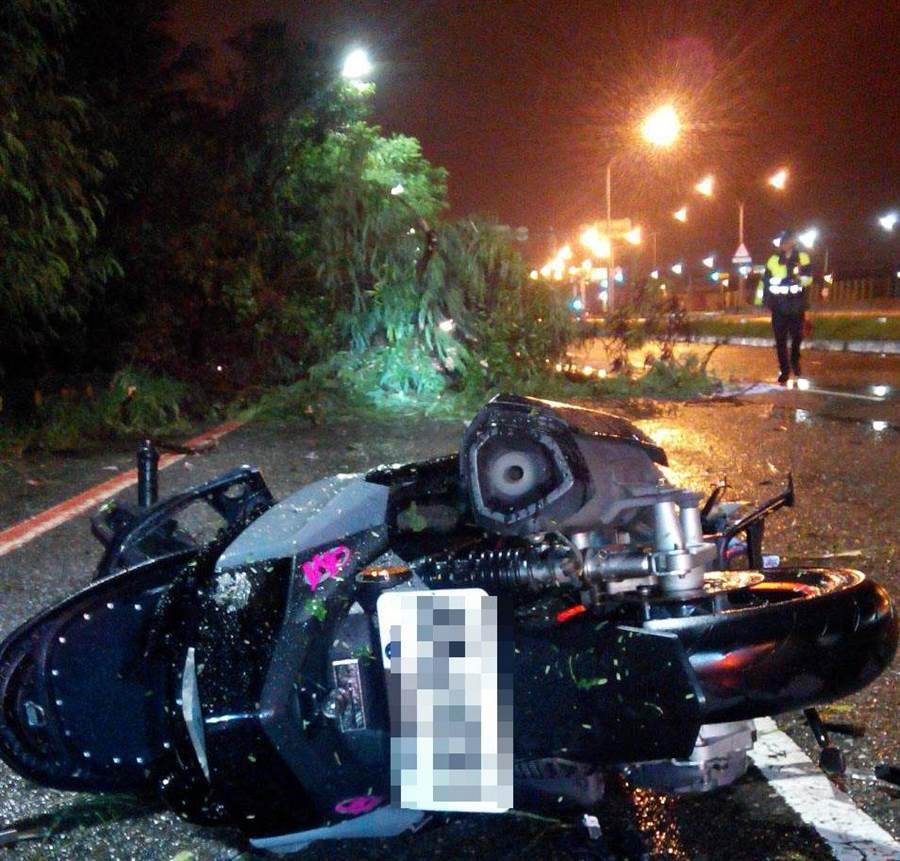 白鹿颱風吹倒台南市多株路樹,一名18歲男騎士因撞上馬路上倒塌路樹,疑遭樹枝穿透胸部,命喪當場。(程炳璋翻攝)