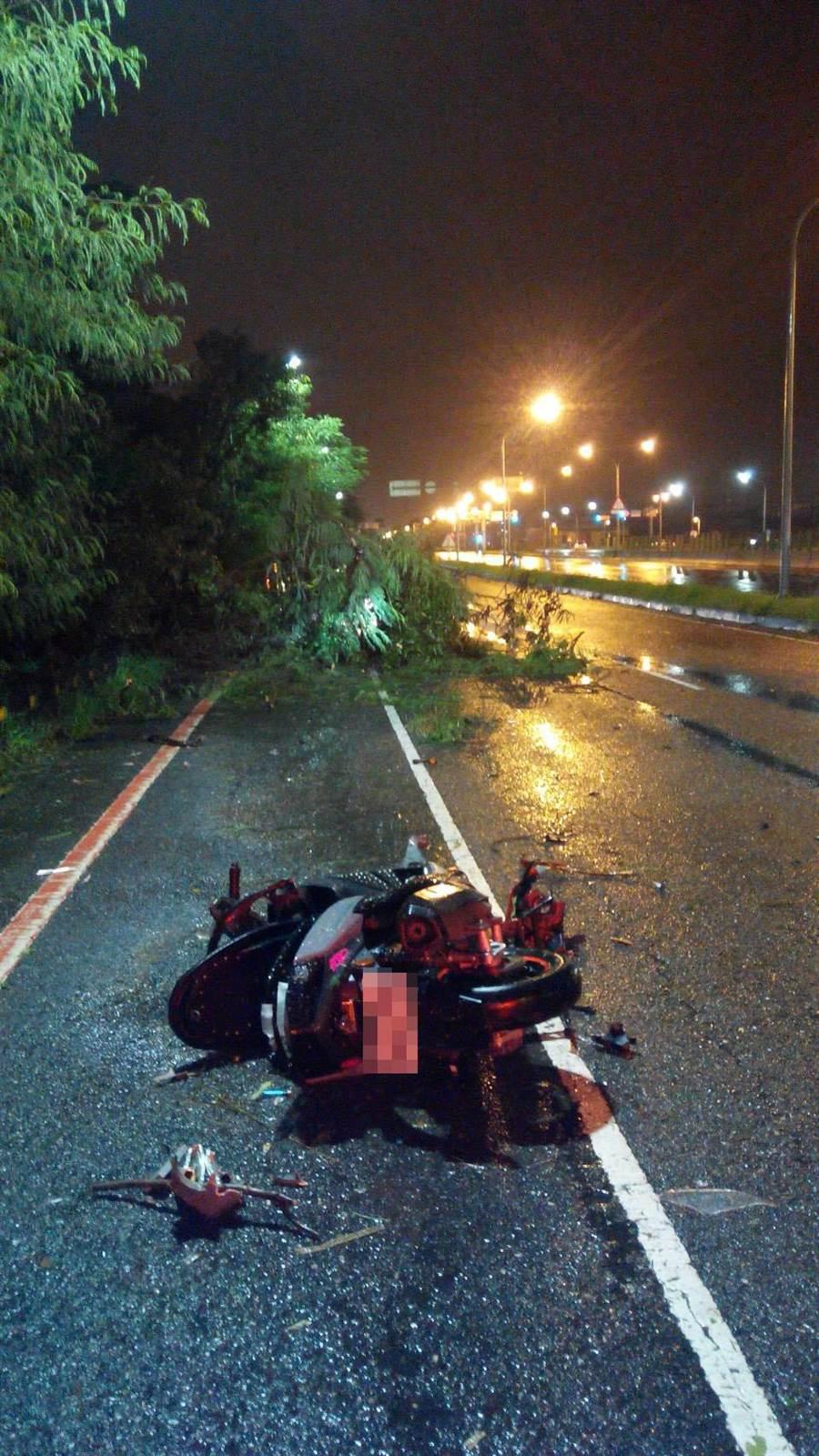白鹿颱風吹倒台南市安南區一株路樹,卻造成18歲男騎士撞樹摔車,意外死亡。(程炳璋攝)