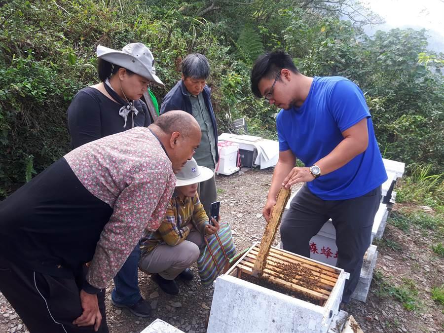 「源森生態」團隊輔導部落的原民學習養蜂及種植花蜜植物等技術,建構當地養蜂產業基礎。(教育部提供)