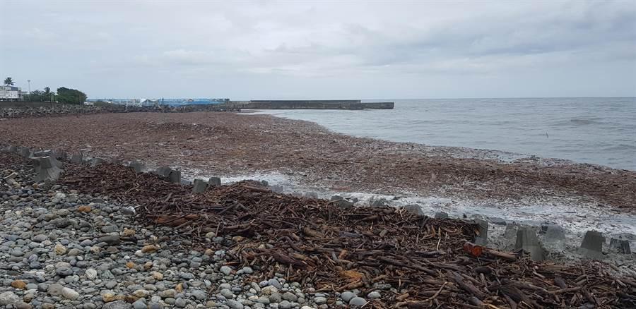 台東出現「木頭海」。(楊漢聲攝)