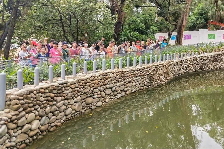 新竹市立動物園讓弱勢大小 朋友不用上網,也能包場入園一睹河馬樂樂的風采。(羅浚濱翻攝)