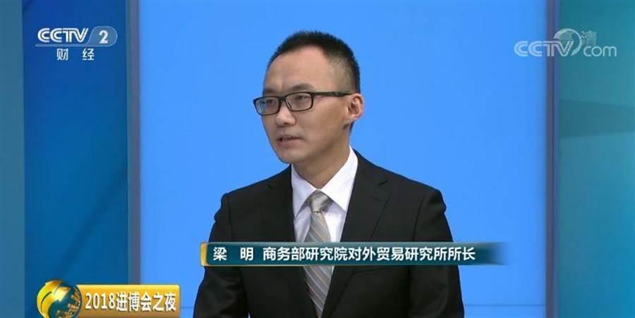 中國商務部研究院對外貿易研究所所長梁明。(大陸央視截圖)