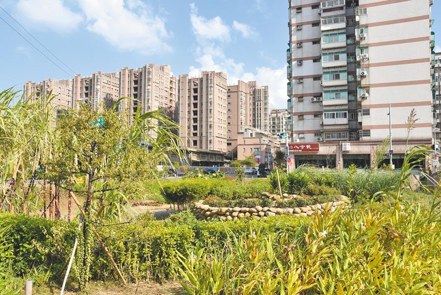 新竹市政府建置的全台首座都會型食物森林示範地,推出以來廣獲國際關注。(新竹市政府提供)