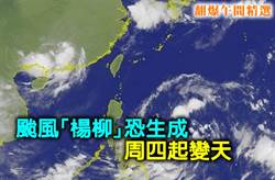 《翻爆午間精選》颱風「楊柳」恐生成 週四起變天