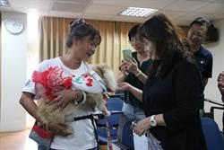 弘光辦研習 芳療、寵物狗導入長照