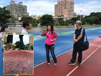 鳳山體育園區跑道又隆起  花媽打臉綠色執政