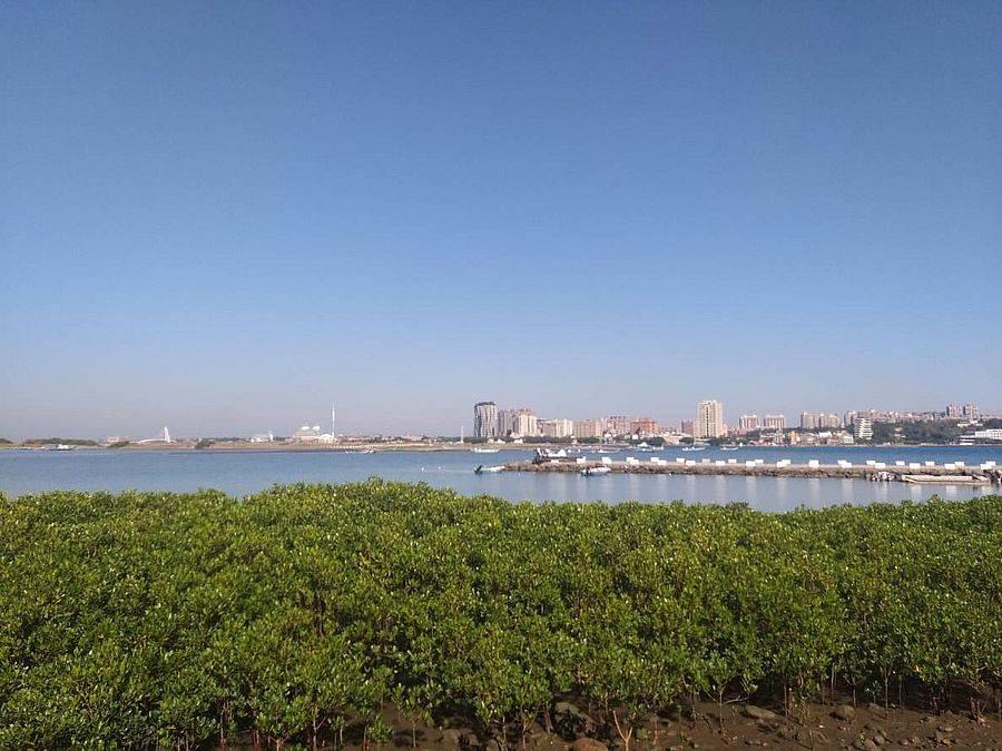 挖子尾可看到水笔仔与台北港。(图取自新北市景观处官网)