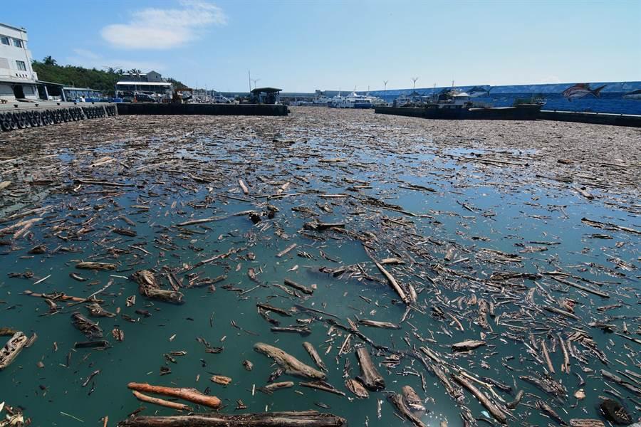 大量漂流木塞爆富岡港,漁船及交通船都無法進出。(莊哲權攝)
