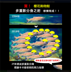 雪霸國寶魚櫻花鉤吻鮭復育有成!已達6800尾
