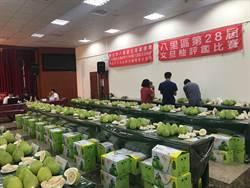 58歲柚農陳金福 蟬聯八里文旦幸福柚比賽二連霸
