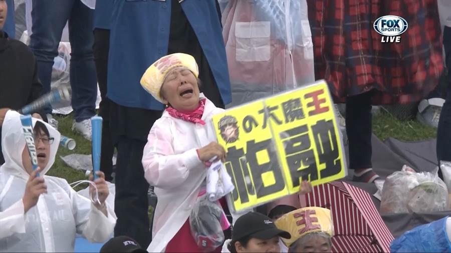 場邊舉著「大魔王柏融」牌子的日本阿嬤,在王柏融敲安後很激動。(截自FOX轉播畫面)