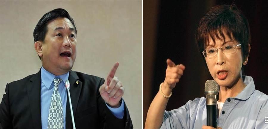 民進黨立委王定宇(左)、前國民黨主席、台南立委擬參選人洪秀柱(右)。(圖/合成圖,本報系資料照)