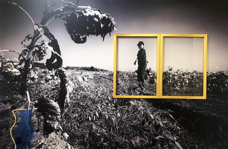 張堂龲、馬瑄、鍾聞達共同創作《華麗的重生》打破平面視覺效果。(形而上畫廊提供)