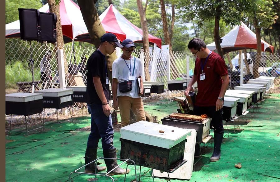 屏科大設置「森林養蜂場暨段木香菇場」人才培訓基地,教導學生及部落族人學習在森林中養蜂。(潘建志攝)