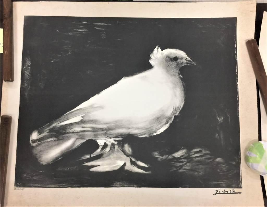 畢卡索於1949年為巴黎第一屆國際和平會議所作的平版畫海報,此後鴿子也成為了舉世聞名的和平象徵。(史博館提供)