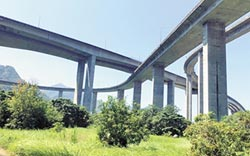 橋聳雲天綠雕園區 南投打造新亮點