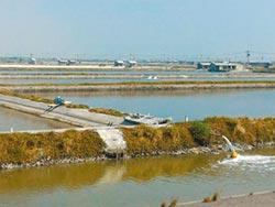 日商投資綠能 台南表態歡迎