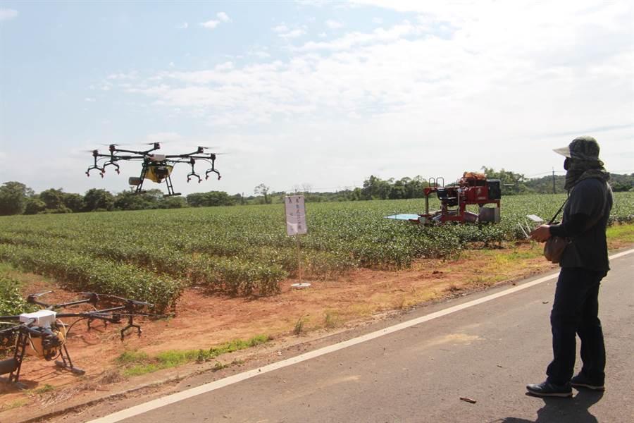 病蟲害防治利用無人機噴灑,可提高效率更節省人力與成本。(何冠嫻攝)