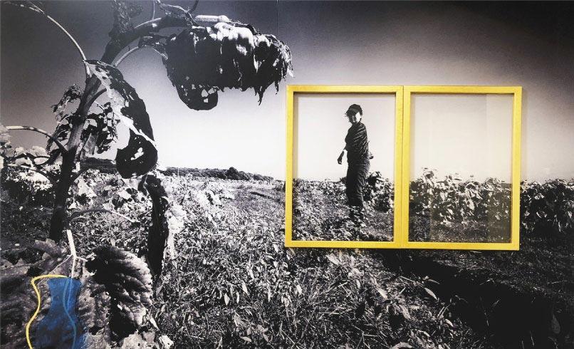 結合油畫家張堂(金庫)、攝影藝術家馬瑄和設計師鍾聞達,三人共同以近乎策展的方式,共同將形而上畫廊的空間進行變造。(形而上畫廊提供)
