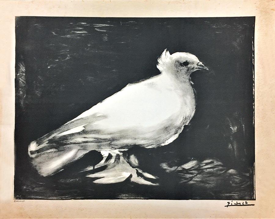 畢卡索於1949年為巴黎第一屆國際和平會議所作的平版畫海報,此後鴿子也成為了舉世聞名的和平象徵。